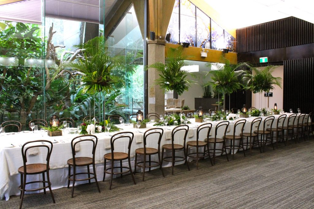 Rainforest Room - Sit down event