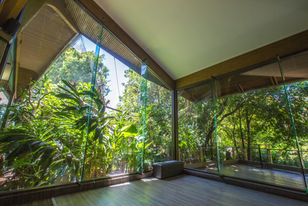 Rainforest Room - Great Views
