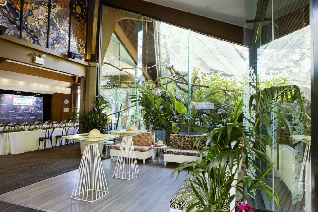 Rainforest Room - Mixed space
