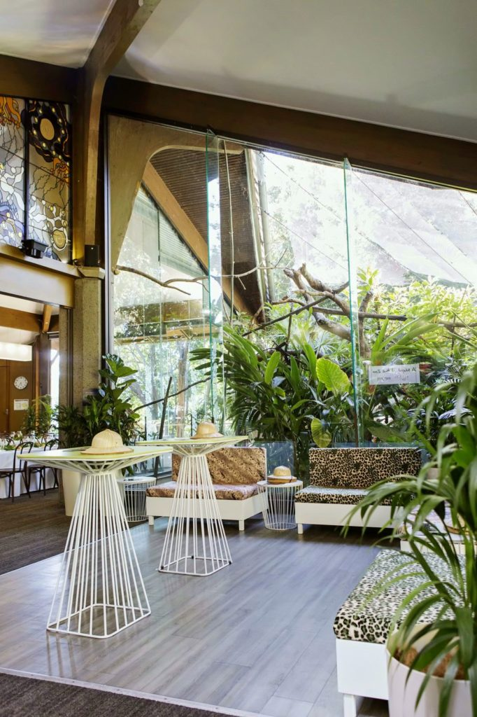 Rainforest Room - Open plan for all styling types